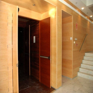 Wooden acoustic door