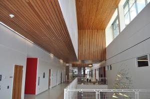wooden-acoustic-tiles1